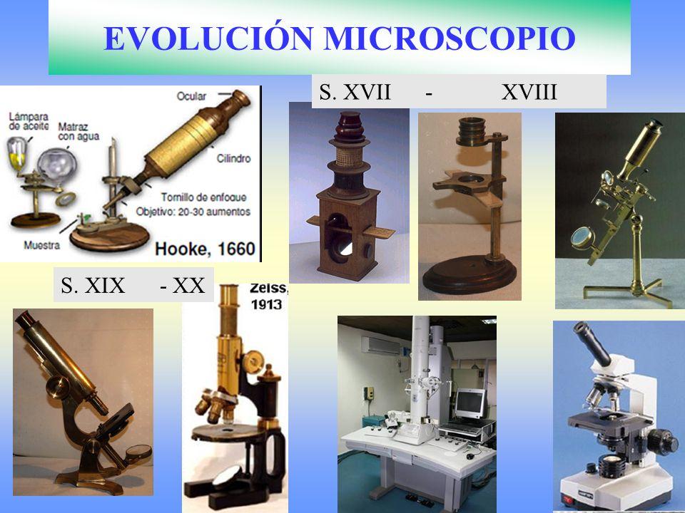 EVOLUCIÓN MICROSCOPIO S. XVII - XVIII S. XIX - XX