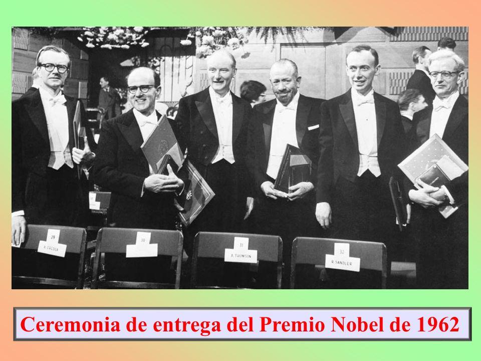 6.1.B.- REVISIÓN HISTÓRICA EN EL ESTUDIO DEL ADN: ESTRUCTURA MOLECULAR RANDALL: M.WILKINS Y ROSALINE FRANKLIN 1952: Difractogramas de Rayos X: Imagen 51.