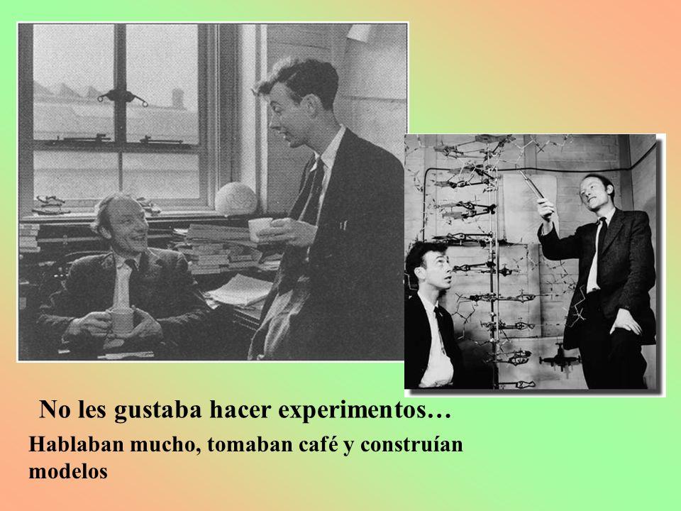 Maurice Wilkins (1916-2004) Neozelandés Físico Soltero 35 años Doctor Rarito: Misógino