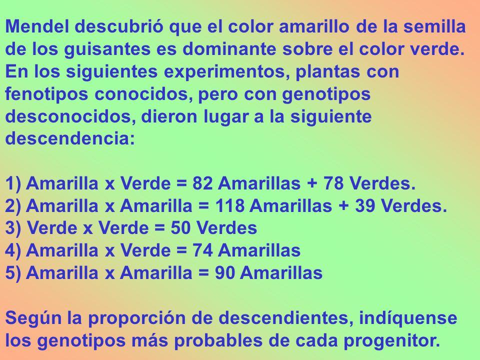 Mendel descubrió que el color amarillo de la semilla de los guisantes es dominante sobre el color verde. En los siguientes experimentos, plantas con f