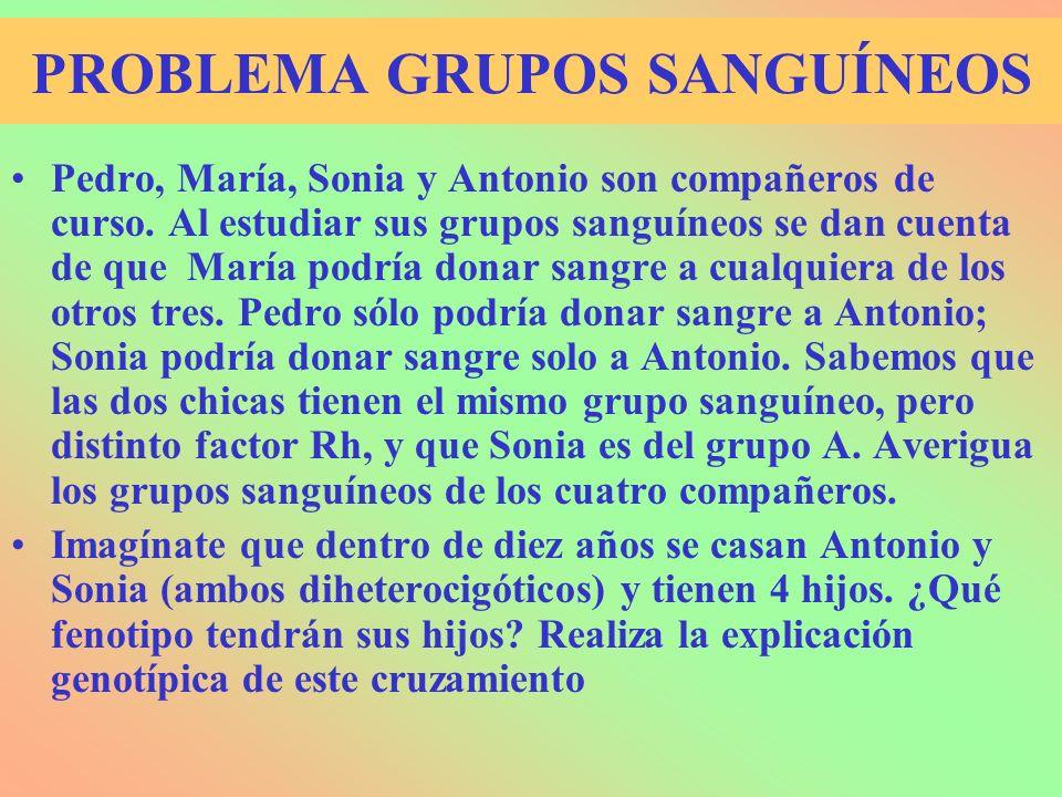 PROBLEMA GRUPOS SANGUÍNEOS Pedro, María, Sonia y Antonio son compañeros de curso. Al estudiar sus grupos sanguíneos se dan cuenta de que María podría