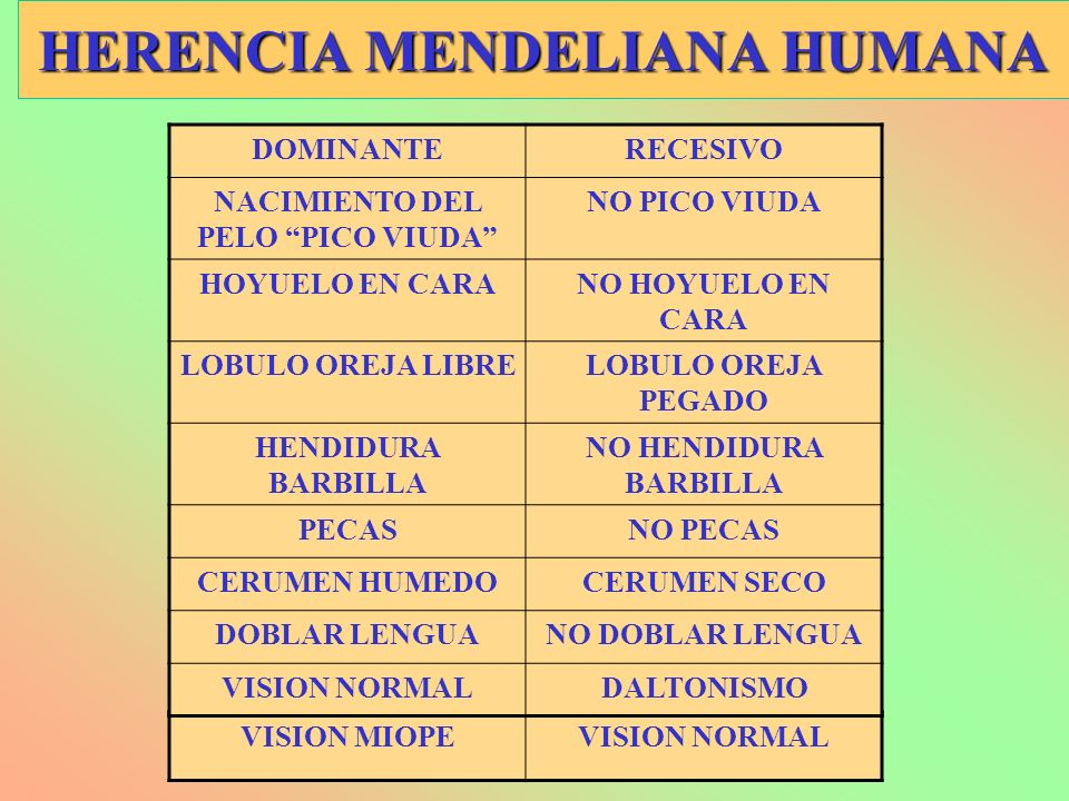 HERENCIA MENDELIANA HUMANA VISION MIOPEVISION NORMAL DOMINANTERECESIVO NACIMIENTO DEL PELO PICO VIUDA NO PICO VIUDA HOYUELO EN CARANO HOYUELO EN CARA