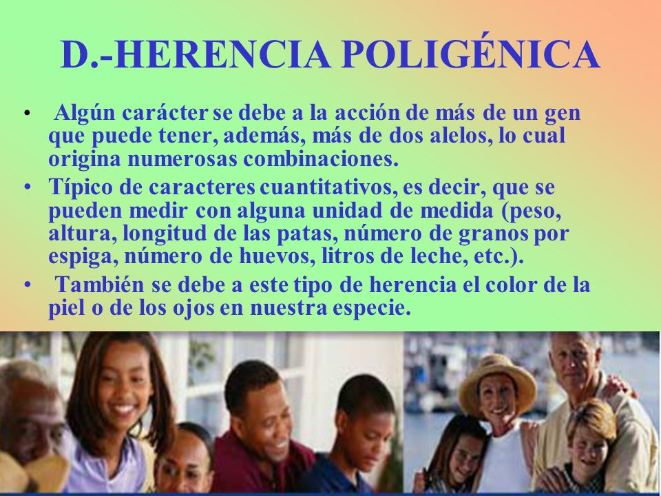 D.-HERENCIA POLIGÉNICA Algún carácter se debe a la acción de más de un gen que puede tener, además, más de dos alelos, lo cual origina numerosas combi