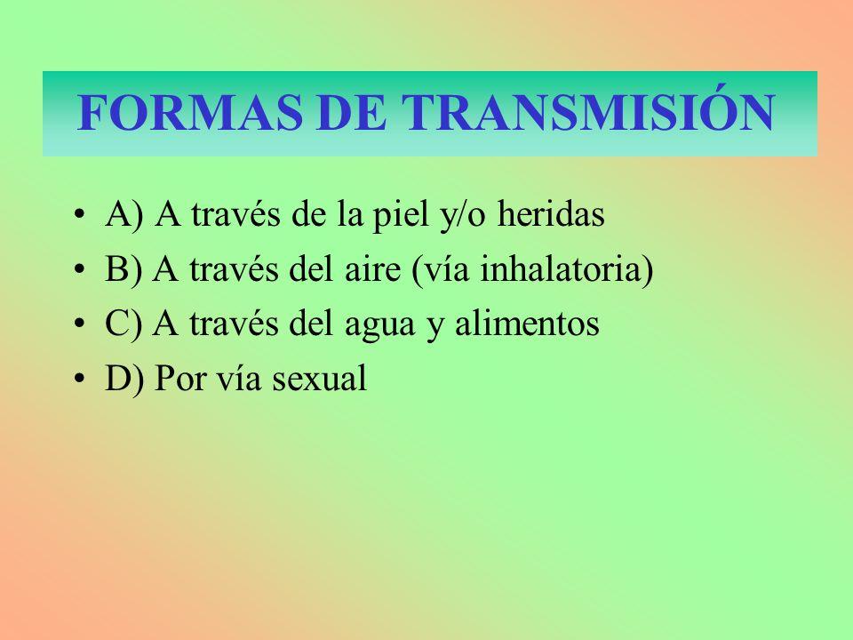 FORMAS DE TRANSMISIÓN A) A través de la piel y/o heridas B) A través del aire (vía inhalatoria) C) A través del agua y alimentos D) Por vía sexual