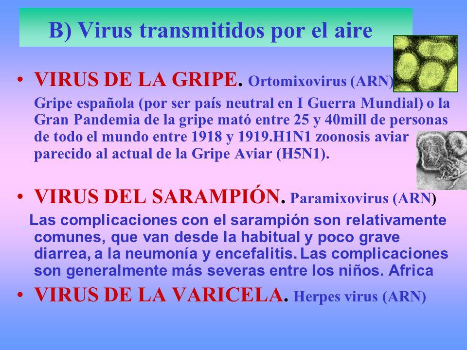 B) Virus transmitidos por el aire VIRUS DE LA GRIPE. Ortomixovirus (ARN) Gripe española (por ser país neutral en I Guerra Mundial) o la Gran Pandemia