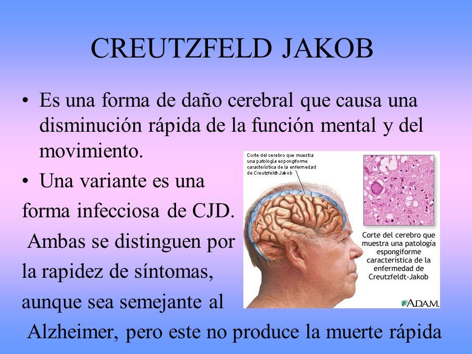CREUTZFELD JAKOB Es una forma de daño cerebral que causa una disminución rápida de la función mental y del movimiento. Una variante es una forma infec