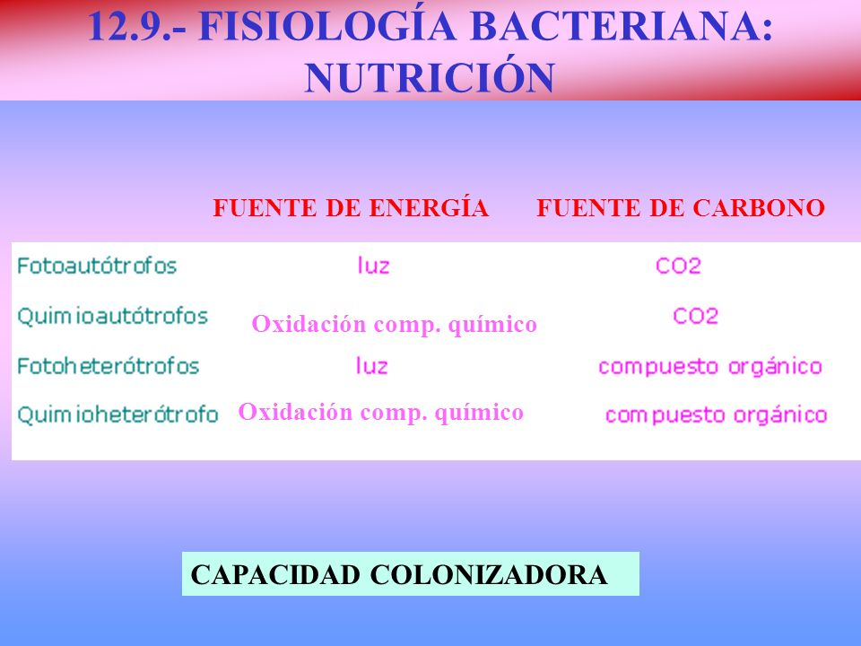 12.9.- FISIOLOGÍA BACTERIANA: NUTRICIÓN FUENTE DE ENERGÍA FUENTE DE CARBONO CAPACIDAD COLONIZADORA Oxidación comp. químico