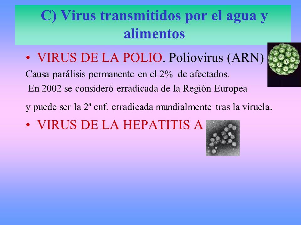 C) Virus transmitidos por el agua y alimentos VIRUS DE LA POLIO. Poliovirus (ARN) Causa parálisis permanente en el 2% de afectados. En 2002 se conside