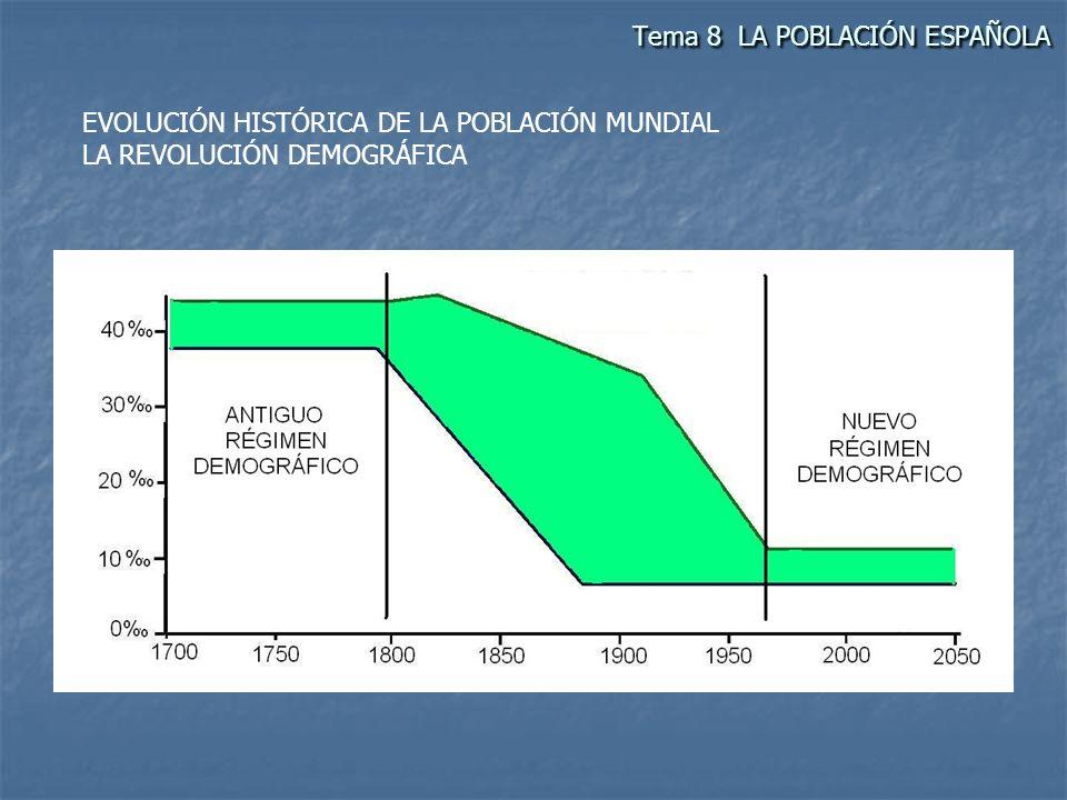 EVOLUCIÓN DE LA POBLACIÓN ESPAÑOLA En España a fines del siglo XVI, (8.400.000 h) la falta de mercados, las malas cosechas, el hambre, las epidemias y guerras, hacen que se de un crecimiento lento pero relativamente continuo.