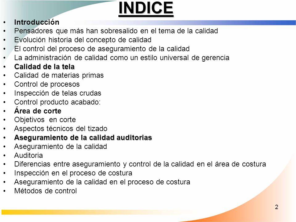 13 CONTROL DEL PROCESO DE ASEGURAMIENTO DE LA CALIDAD
