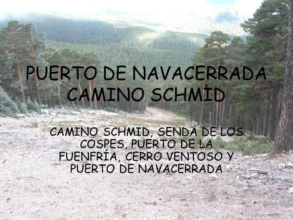 PUERTO DE NAVACERRADA CAMINO SCHMID CAMINO SCHMID, SENDA DE LOS COSPES, PUERTO DE LA FUENFRÍA, CERRO VENTOSO Y PUERTO DE NAVACERRADA