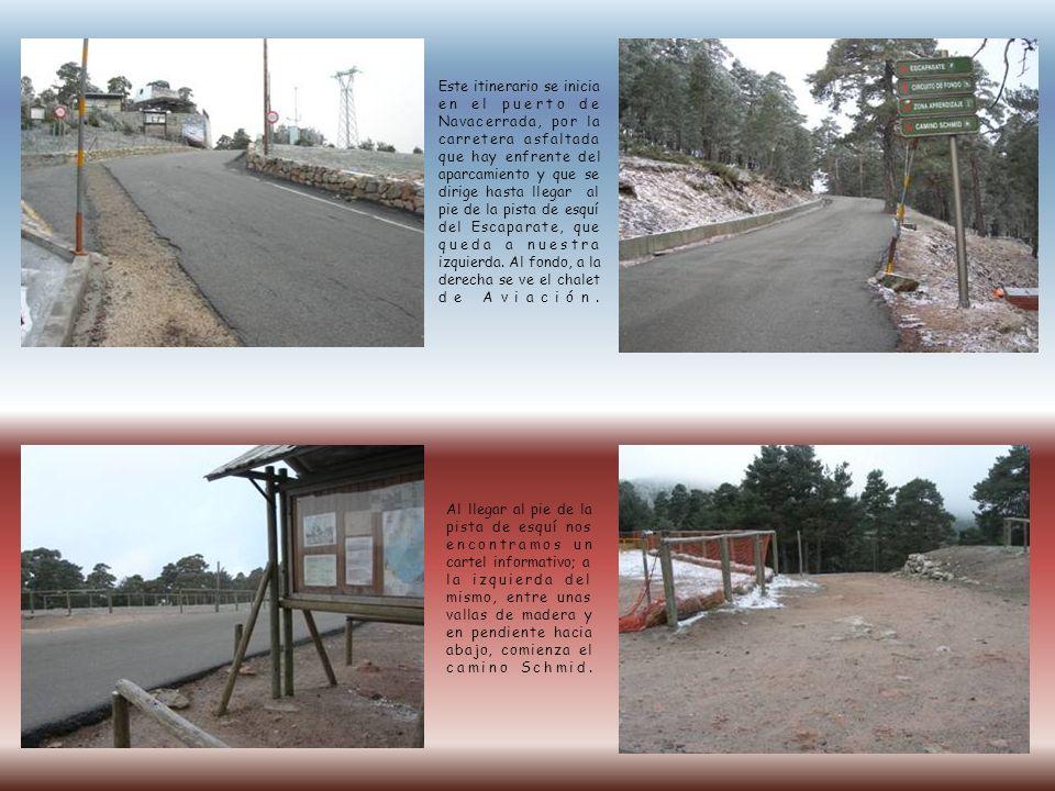 Este itinerario se inicia en el puerto de Navacerrada, por la carretera asfaltada que hay enfrente del aparcamiento y que se dirige hasta llegar al pi