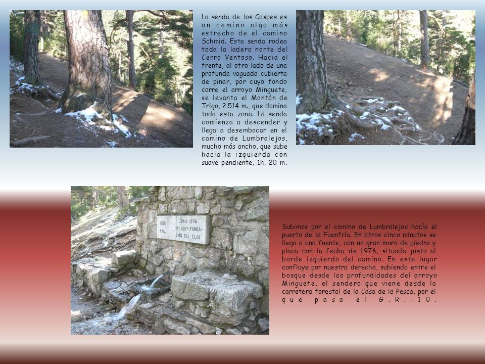 La senda de los Cospes es un camino algo más estrecho de el camino Schmid. Esta senda rodea toda la ladera norte del Cerro Ventoso. Hacia el frente, a