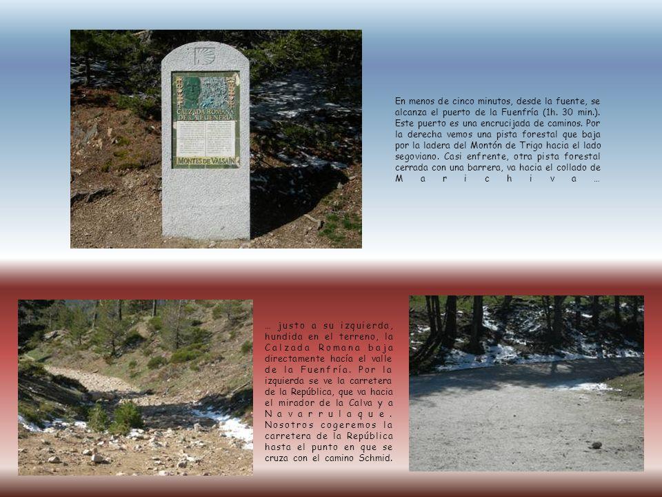 Una vez que llegamos al punto en que se cruza la carretera de la República con el Camino Schmid, cogeremos éste dirección al cerro Ventoso y nos dejará en el cruce del Camino Schmid con la Senda de los Cospes.