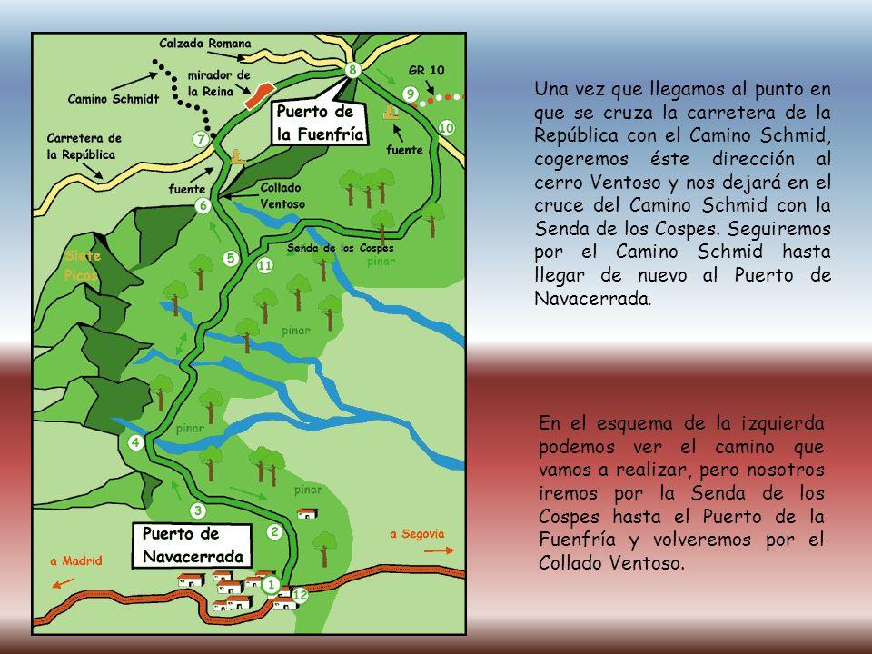 Una vez que llegamos al punto en que se cruza la carretera de la República con el Camino Schmid, cogeremos éste dirección al cerro Ventoso y nos dejar