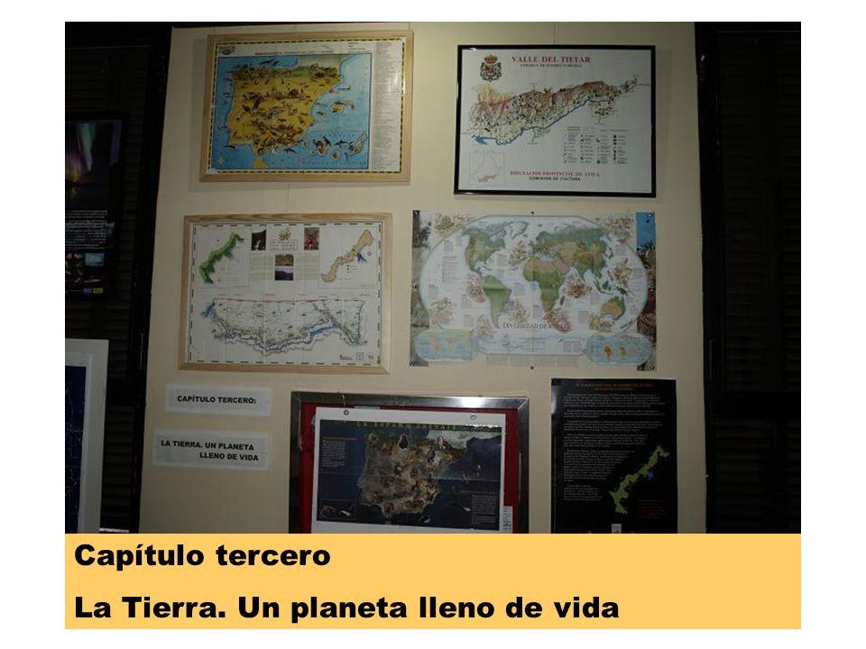 Cap 4 Capítulo cuarto: El planeta Tierra I