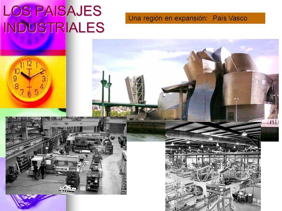LOS PAISAJES INDUSTRIALES Una región en expansión: País Vasco
