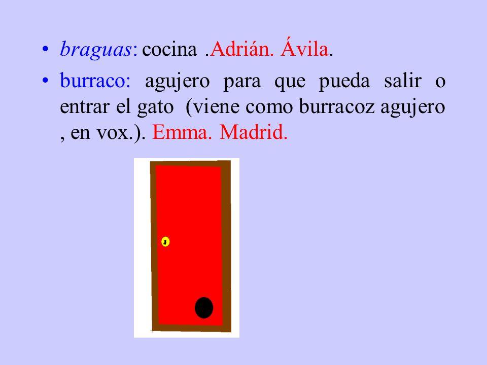 biolos: piedras grandes. Nano. Extremadura. bobilucho: tonto. Rubén. Ávila. boche: cria del burro. Guti. Badajoz. bolindre, bolo: canica. Nano. Extrem