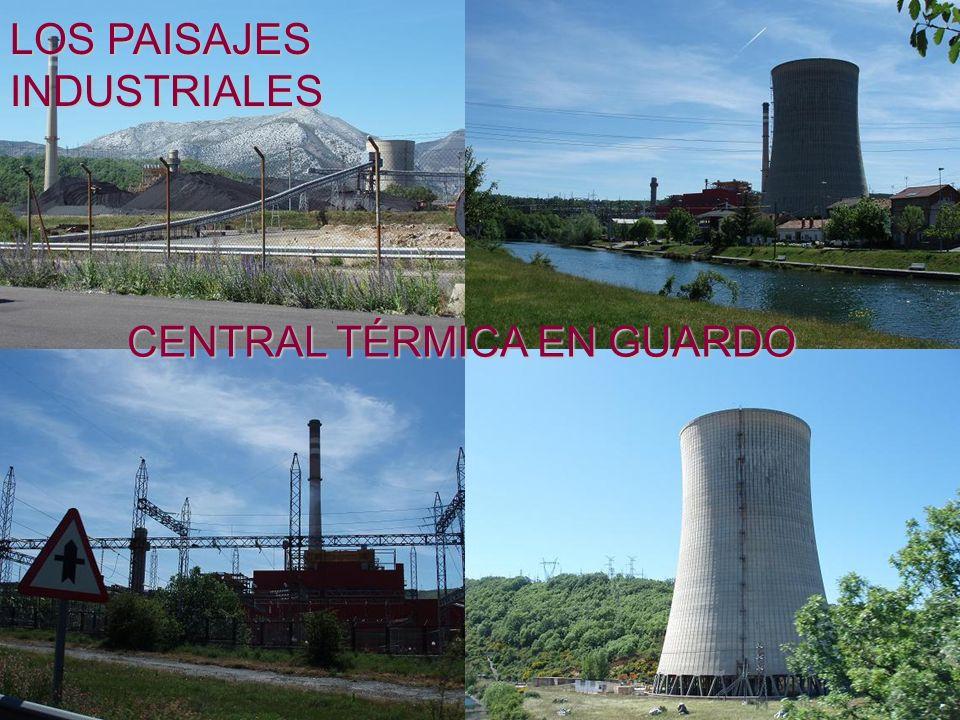 CENTRAL TÉRMICA EN GUARDO