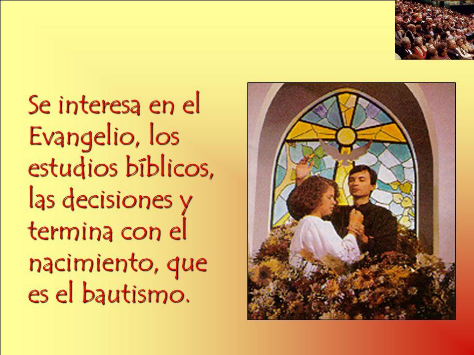 Se interesa en el Evangelio, los estudios bíblicos, las decisiones y termina con el nacimiento, que es el bautismo.