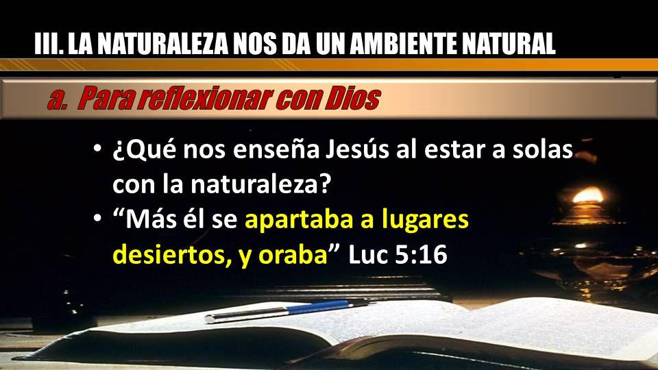 III. LA NATURALEZA NOS DA UN AMBIENTE NATURAL ¿Qué nos enseña Jesús al estar a solas con la naturaleza? ¿Qué nos enseña Jesús al estar a solas con la