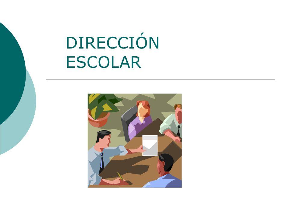 Enero de 2009 DIRECCIÓN - LIDERAZGO DIRECCIÓN CAPACIDAD PARA ORGANIZAR LOS RECURSOS Y PARA COORDINAR LA EJECUCIÓN DE LAS TAREAS NECESARIAS PARA ALCANZAR UN OBJETIVO DE MANERA OPORTUNA Y EFICAZ EN TÉRMINOS DE COSTE Y EFICACIA.