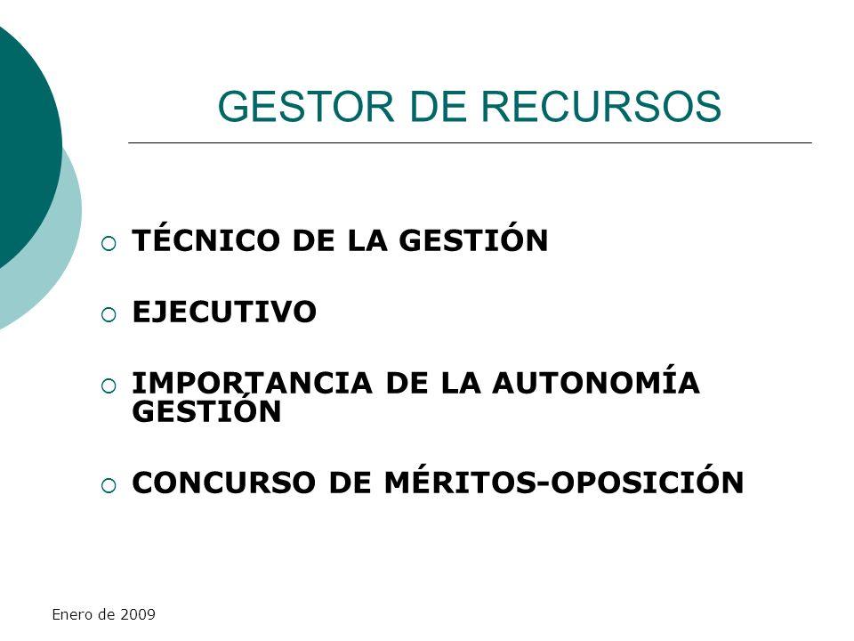 Enero de 2009 GESTOR DE RECURSOS TÉCNICO DE LA GESTIÓN EJECUTIVO IMPORTANCIA DE LA AUTONOMÍA GESTIÓN CONCURSO DE MÉRITOS-OPOSICIÓN