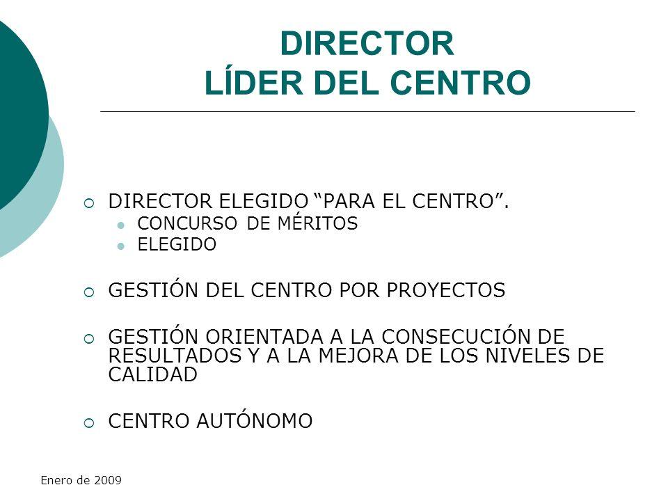 Enero de 2009 DIRECTOR LÍDER DEL CENTRO DIRECTOR ELEGIDO PARA EL CENTRO. CONCURSO DE MÉRITOS ELEGIDO GESTIÓN DEL CENTRO POR PROYECTOS GESTIÓN ORIENTAD