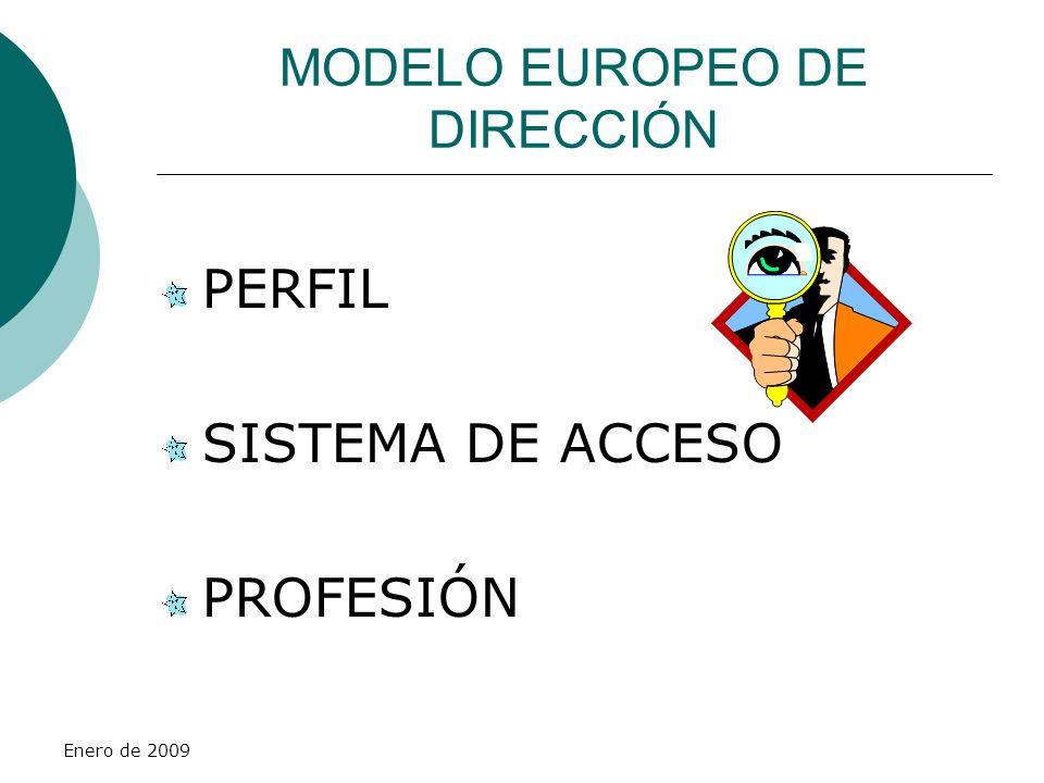 Enero de 2009 PERFIL PROFESIONAL PROFESIONAL CUALIFICADO EXPERIENCIA DOCENTE, PERO NO DOCENTE PROFESIONAL DOCENTE