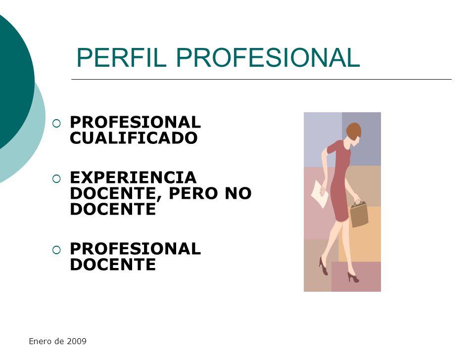 Enero de 2009 MODELO - LOCE MODELO PROFESIONAL SISTEMA DE ACCESO FORMACIÓN FUNCIONES O COMPETENCIAS REPRESENTANTE DE LA ADMINISTRACIÓN MAYOR AUTONOMÍA Y RESPONSABILIDAD NO EXISTENCIA DE ÓRGANOS COLEGIADOS DE GOBIERNO