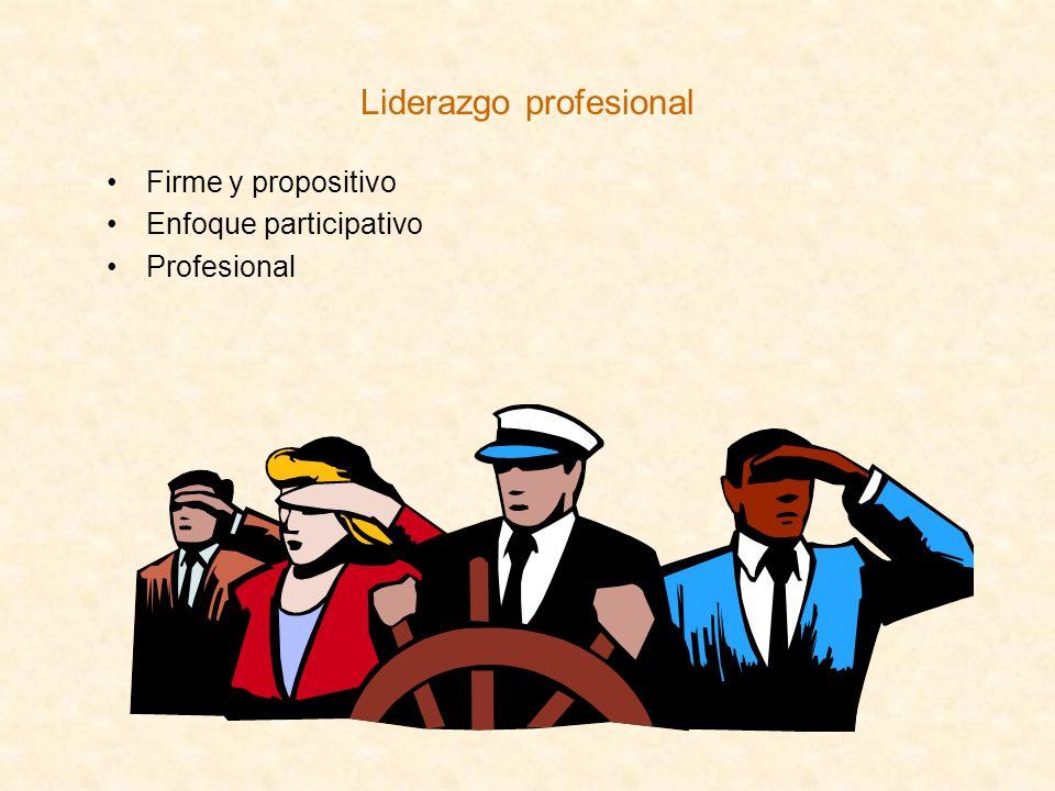 Liderazgo profesional Firme y propositivo Enfoque participativo Profesional