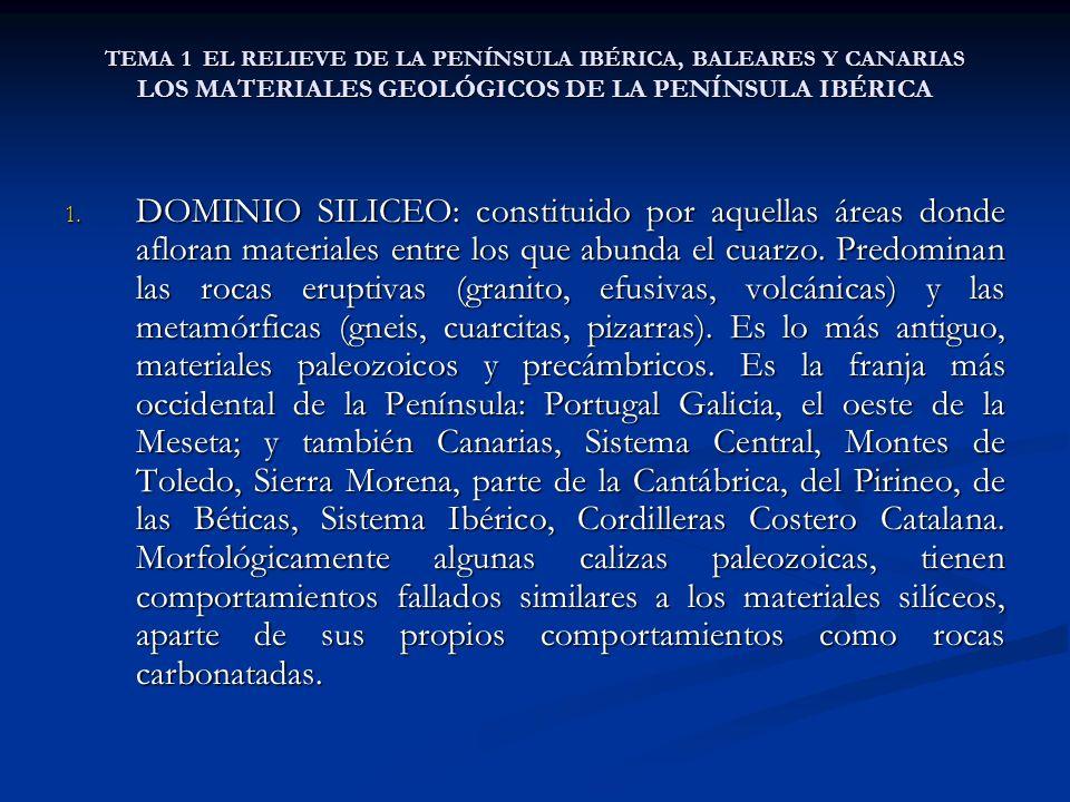TEMA 1 EL RELIEVE DE LA PENÍNSULA IBÉRICA, BALEARES Y CANARIAS LOS MATERIALES GEOLÓGICOS DE LA PENÍNSULA IBÉRICA 1. DOMINIO SILICEO: constituido por a