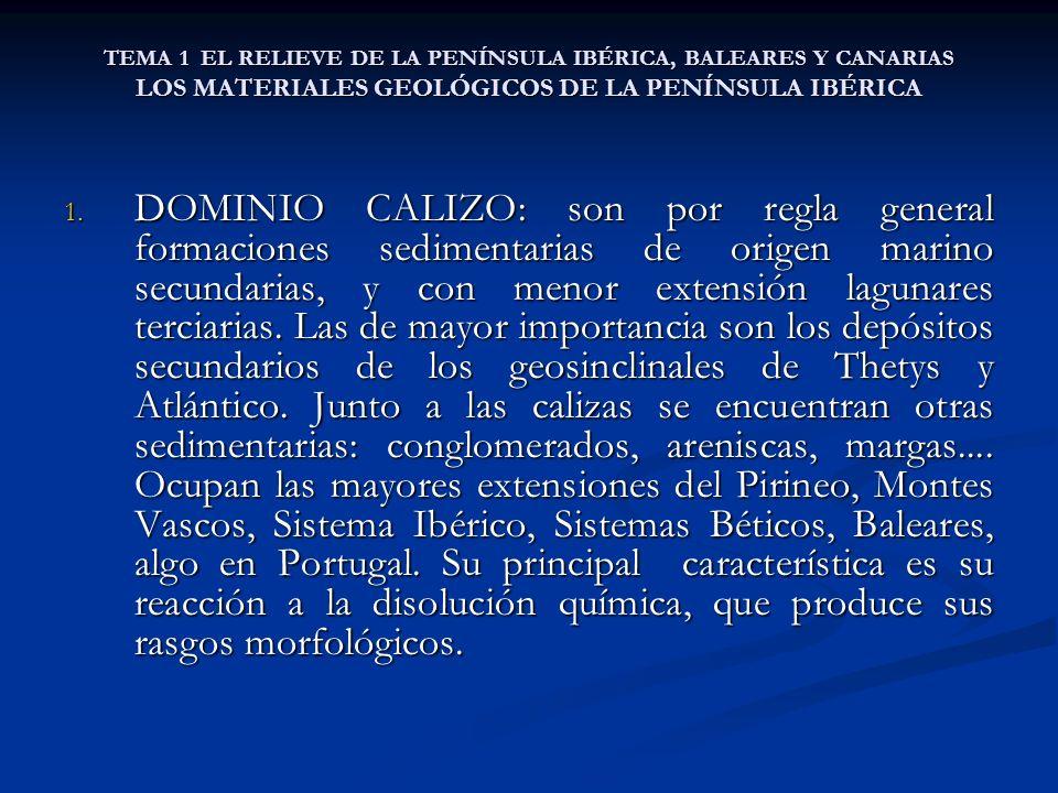 TEMA 1 EL RELIEVE DE LA PENÍNSULA IBÉRICA, BALEARES Y CANARIAS LOS MATERIALES GEOLÓGICOS DE LA PENÍNSULA IBÉRICA 1. DOMINIO CALIZO: son por regla gene