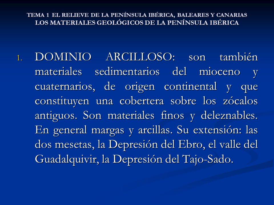 TEMA 1 EL RELIEVE DE LA PENÍNSULA IBÉRICA, BALEARES Y CANARIAS LOS MATERIALES GEOLÓGICOS DE LA PENÍNSULA IBÉRICA 1. DOMINIO ARCILLOSO: son también mat
