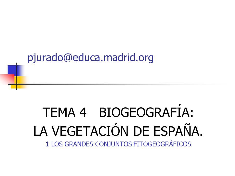 TEMA 4 BIOGEOGRAFÍA: LA VEGETACIÓN DE ESPAÑA. 1 LOS GRANDES CONJUNTOS FITOGEOGRÁFICOS pjurado@educa.madrid.org