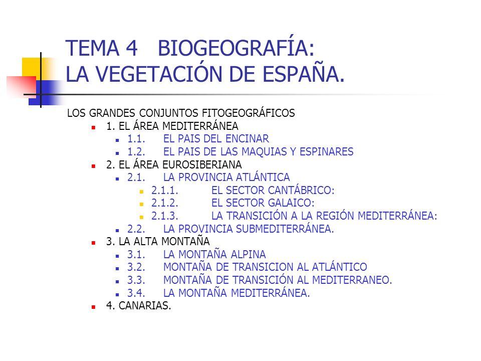 TEMA 4 BIOGEOGRAFÍA: LA VEGETACIÓN DE ESPAÑA. LOS GRANDES CONJUNTOS FITOGEOGRÁFICOS 1. EL ÁREA MEDITERRÁNEA 1.1.EL PAIS DEL ENCINAR 1.2.EL PAIS DE LAS