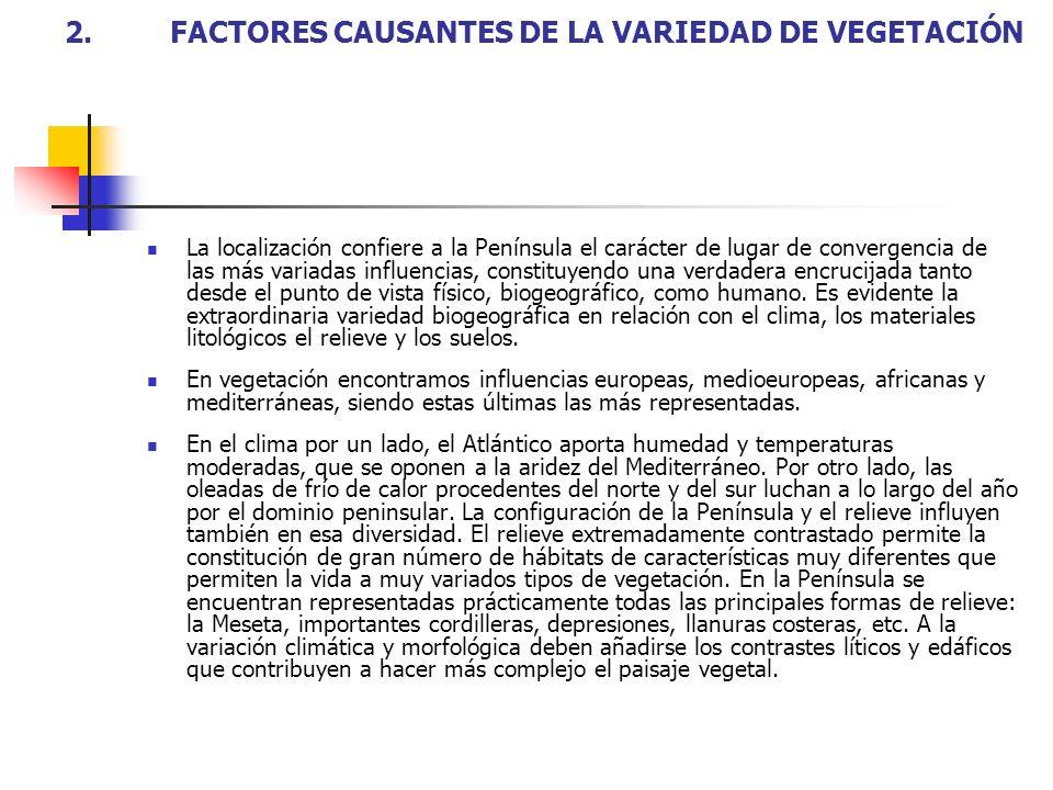 2.FACTORES CAUSANTES DE LA VARIEDAD DE VEGETACIÓN La localización confiere a la Península el carácter de lugar de convergencia de las más variadas inf