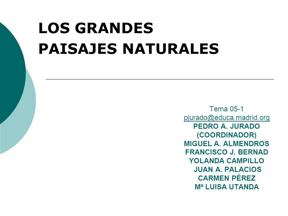 LOS GRANDES PAISAJES NATURALES Los diversos elementos que integran el medio natural se disponen en el espacio de forma interrelacionada, constituyendo grandes paisajes naturales.