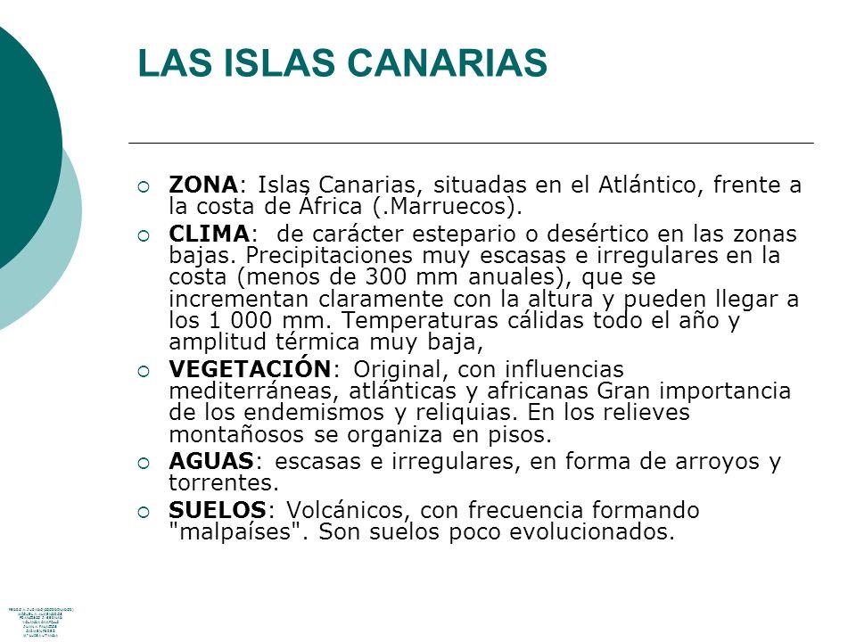 LAS ISLAS CANARIAS ZONA: Islas Canarias, situadas en el Atlántico, frente a la costa de África (.Marruecos). CLIMA: de carácter estepario o desértico