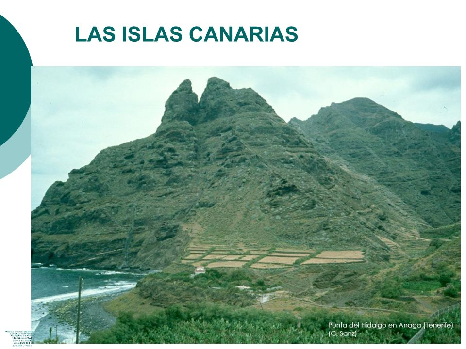 LAS ISLAS CANARIAS PEDRO A. JURADO (COORDINADOR) MIGUEL A. ALMENDROS FRANCISCO J. BERNAD YOLANDA CAMPILLO JUAN A. PALACIOS CARMEN PÉREZ Mª LUISA UTAND