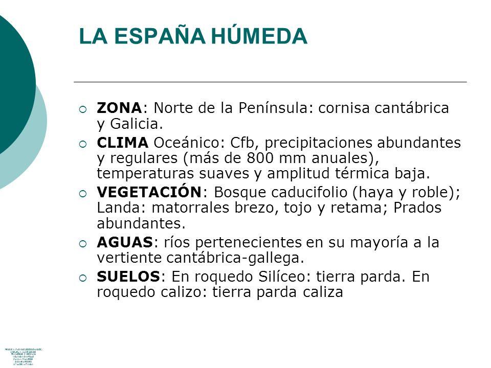 LA ESPAÑA HÚMEDA ZONA: Norte de la Península: cornisa cantábrica y Galicia. CLIMA Oceánico: Cfb, precipitaciones abundantes y regulares (más de 800 mm