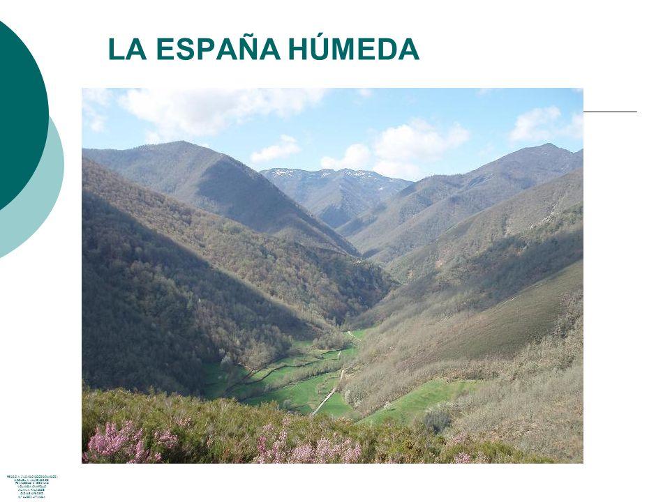 LA ESPAÑA HÚMEDA PEDRO A. JURADO (COORDINADOR) MIGUEL A. ALMENDROS FRANCISCO J. BERNAD YOLANDA CAMPILLO JUAN A. PALACIOS CARMEN PÉREZ Mª LUISA UTANDA