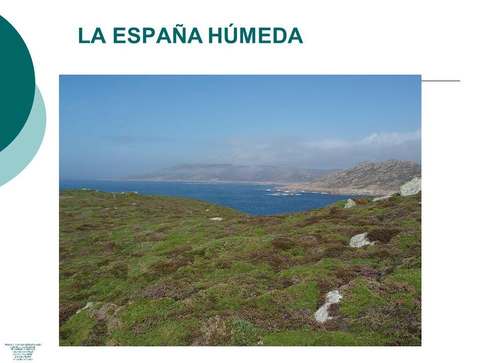 LA ESPAÑA MEDITERRÁNEA ZONA: Toda la península Baleares, Ceuta y Melilla, menos la España húmeda y montañas.