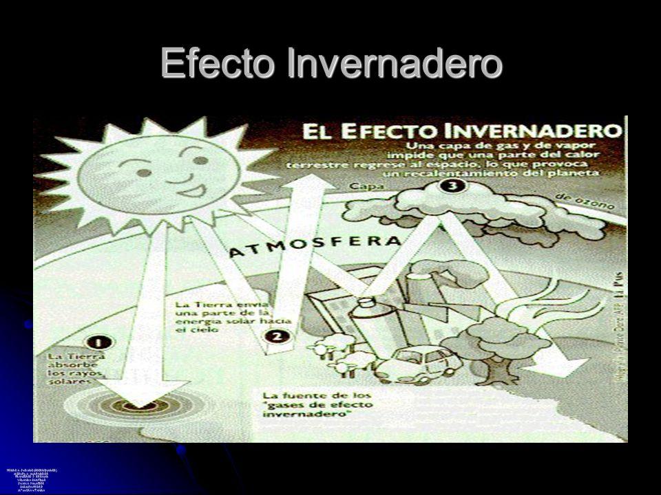 Efecto Invernadero PEDRO A. JURADO (COORDINADOR) MIGUEL A. ALMENDROS FRANCISCO J. BERNAD YOLANDA CAMPILLO JUAN A. PALACIOS CARMEN PÉREZ Mª LUISA UTAND