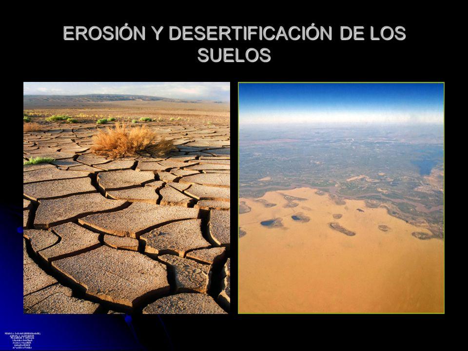 EROSIÓN Y DESERTIFICACIÓN DE LOS SUELOS PEDRO A. JURADO (COORDINADOR) MIGUEL A. ALMENDROS FRANCISCO J. BERNAD YOLANDA CAMPILLO JUAN A. PALACIOS CARMEN