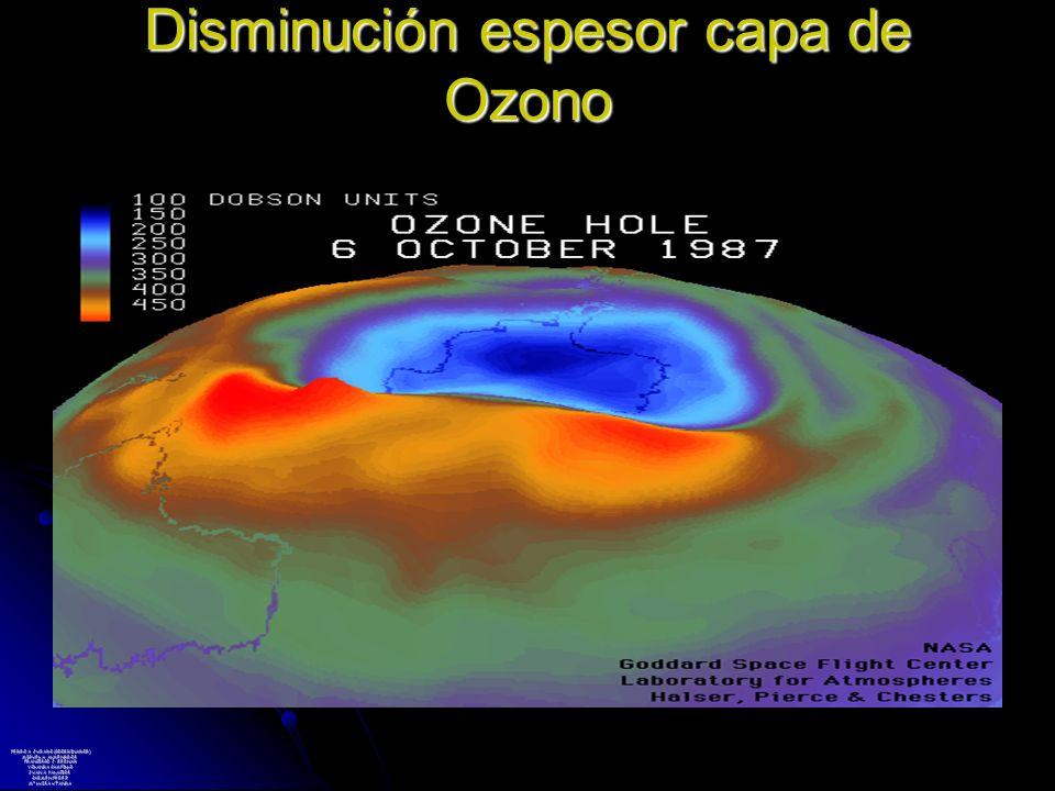 Disminución espesor capa de Ozono PEDRO A. JURADO (COORDINADOR) MIGUEL A. ALMENDROS FRANCISCO J. BERNAD YOLANDA CAMPILLO JUAN A. PALACIOS CARMEN PÉREZ
