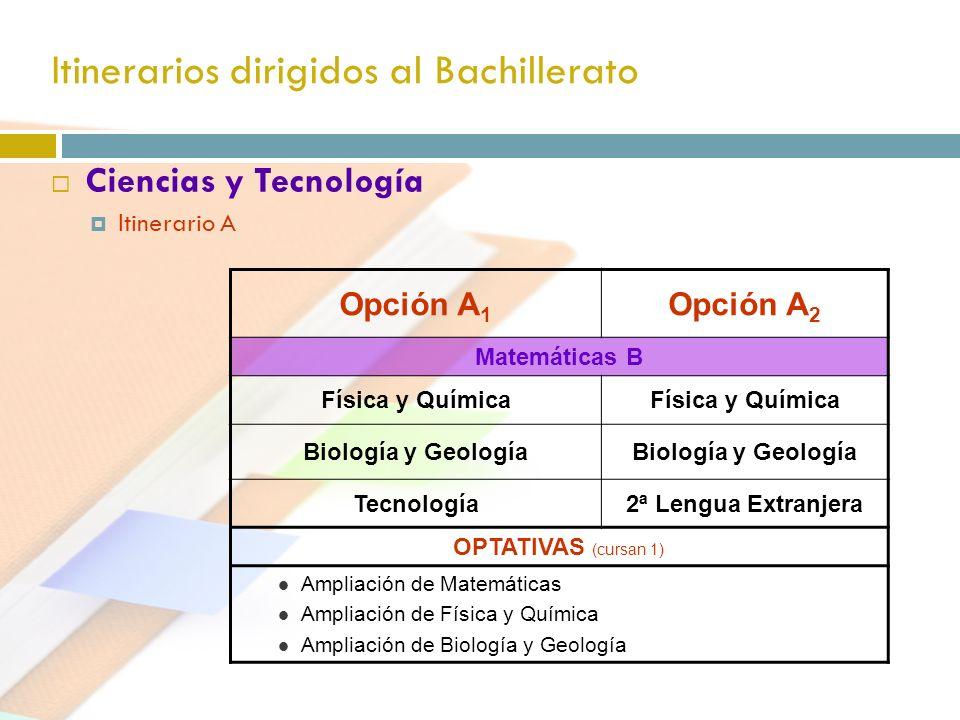Itinerarios dirigidos al Bachillerato Ciencias y Tecnología Itinerario A Opción A 1 Opción A 2 Matemáticas B Física y Química Biología y Geología Tecn