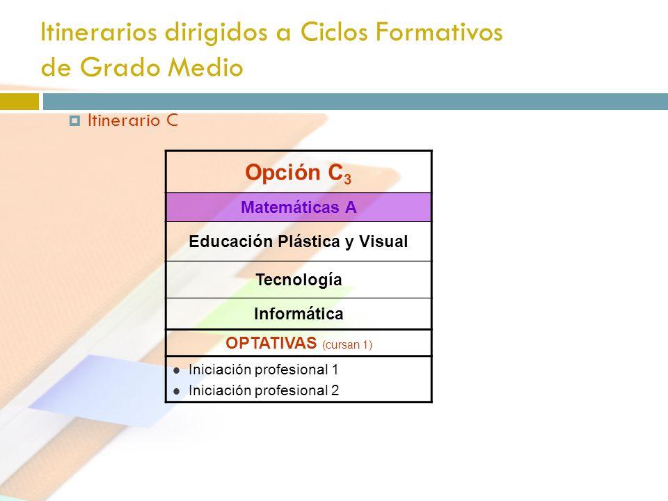 Itinerarios dirigidos a Ciclos Formativos de Grado Medio Itinerario C Opción C 3 Matemáticas A Educación Plástica y Visual Tecnología Informática OPTA