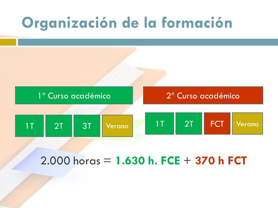 Organización de la formación 1º Curso académico2º Curso académico 1T2T3T Verano 1T2TFCT Verano 2.000 horas = 1.630 h. FCE + 370 h FCT