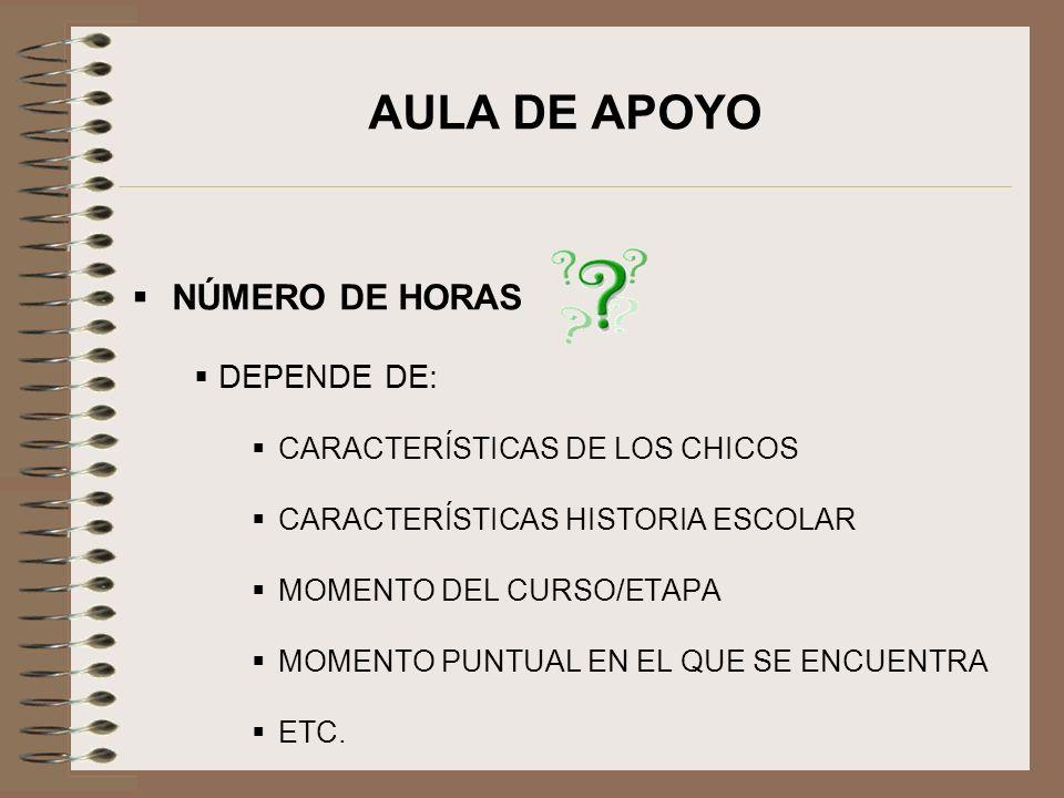 AULA DE APOYO NÚMERO DE HORAS DEPENDE DE: CARACTERÍSTICAS DE LOS CHICOS CARACTERÍSTICAS HISTORIA ESCOLAR MOMENTO DEL CURSO/ETAPA MOMENTO PUNTUAL EN EL